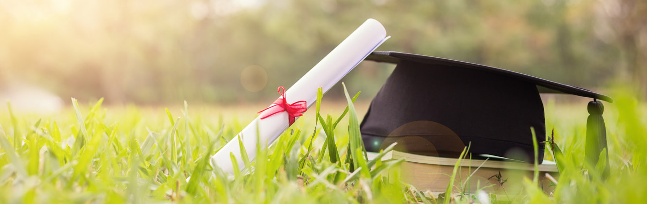 Graduate's hat and diploma in the grass